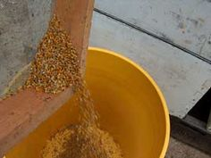 How to collect bee pollen