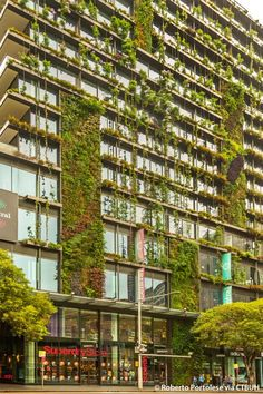 Patrick Blanc's vertical gardens are interspersed in 21 various sized panels across the facades of the two towers, spanning over 1000 square metres and containing 35,000 plants and 350 different species. One Central Park, Sydney, Ateliers Jean Nouvel and PTW - One Central Park - The Skyscraper Centre, Photo Roberto Portolese