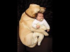 Dog and baby.....this is a must with Carterrrr