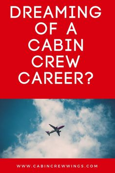Your cabin crew training for a new career starts here with Cabin Crew Wings. We provide the most up to date information to help you land cabin crew jobs. Cabin Crew Recruitment, Cabin Crew Jobs, Become A Flight Attendant, Major Airlines, New Career, Job S, Need To Know, Behind The Scenes, How To Become