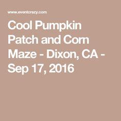 Cool Pumpkin Patch and Corn Maze - Dixon, CA - Sep 17, 2016 Cool Patches, Pumpkins, Cool Stuff, Pumpkin, Butternut Squash, Squash, Gourd, Gourds
