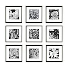 "Gallery Wall Frame Set wallverbs™ organic ""live, love, laugh"" blossom 6-piece box picture"