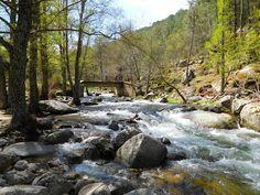 Desde Pelayos de la Presa: Entra la primavera en el Valle de Iruelas