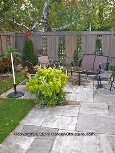 Wooden Fences with privacy screens... Instead of the trellis that fall down when the plants get big and heavy.