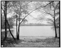 """On August 9, 1854, Henry David Thoreau's """"Walden"""" (which describes his experiences while living near Walden Pond) is first published."""