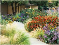 A brave design stands up well to drought in this southern California garden. orange flower is lantana