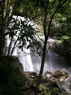 La Coca Falls Puerto Rico.