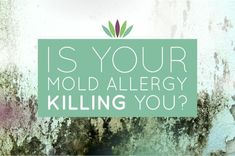 Is Your Mold Allergy Killing You Ginger Benefits, Health Benefits, Migraine, Health Problems, Ways To Lose Weight, Home Remedies, Natural Remedies, Herbal Remedies, Health Remedies
