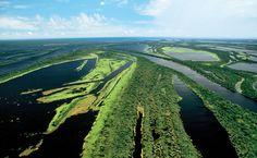 Mar de ilhas e canais do arquipélago fluvial de Anavilhanas