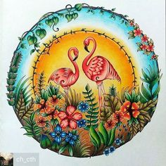 @Regrann_App from @ch_cth -  #johannabasford #magicaljungle #johannabasfordenchantedforest #johannabasfordsecretgarden #johannabasfordlostocean  #lostocean #secretgarden #enchantedforest #milliemarotta  #coloring #adultcoloring #adultcolouring #adultcoloringbook #coloringforadults #coloredpencils #fabercastell #coloringbook #art #artwork #coloringbook #coloring_secrets #artecomoterapia #bayan_boyan #coloringmasterpiece #colorindolivrostop #creativelycoloring #regrann#wonderfulcoloring