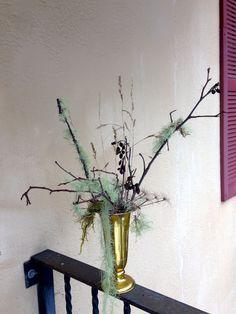Stylists, Seasons, Plants, Style, Seasons Of The Year, Flora, Plant, Planting