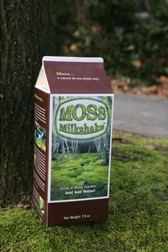 Moss Milkshake - Moss Graffiti :) This would be fantastic for our house numbers Natural Landscaping, Garden Landscaping, Landscaping Ideas, Organic Gardening, Gardening Tips, Gardening Services, Gardening Quotes, Indoor Gardening, Moss Graffiti