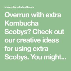 Overrun with extra Kombucha Scobys? Check out our creative ideas for using extra Scobys. You might be surprised by all their uses!