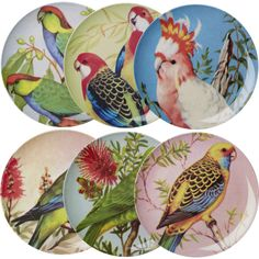 Melamine Dinner Plate with 6 Assorted Vintage Bird Prints @rice_up #ricedk