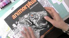 Chameleon's & Coloring Books