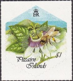 Stamp: Bee on passion flower (Pitcairn Islands) (Bee-keeping) Mi:PN 556 Pitcairn Islands, Passion Flower, Bee Keeping, My Stamp, Stamp Collecting, Stamps, Flowers, Gifts, Islands