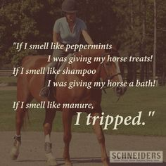 equestrian quotes | Been there. | Horse Quotes