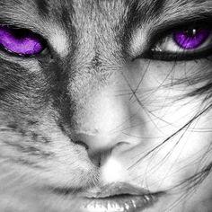 Half woman/cat via www.Facebook.com/PurpleIsWho