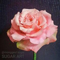 """좋아요 775개, 댓글 40개 - Instagram의 《몽글슈가》 슈가케이크 전국배송(@monggeul_sugar)님: """"#몽글슈가플라워 _ #sugarcraft #20160121 #sugarflower #sugarrose #sugarflowers #fondant #gumpaste…"""""""