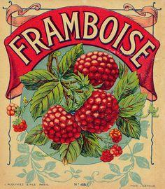 my grandmother's last name was Laframboise...maybe that's why i <3 raspberries so much...miss you grandma...<3
