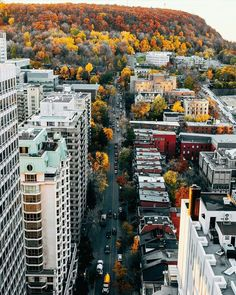 Explore the most beautiful places in Montreal▶️ . I ❤ Montreal. 📷 Photo by 👏 Montreal Ville, Montreal Quebec, Quebec City, Canada Toronto, Pvt Canada, Alberta Canada, Ottawa, Ontario, Vancouver