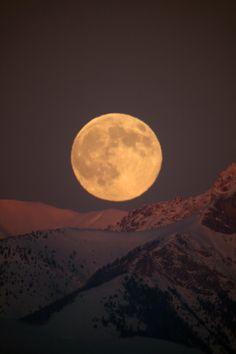Moon Rise by frenchbear on DeviantArt Moon Photos, Moon Pictures, Luna Moon, Shoot The Moon, Moon Photography, Moon Rise, Moon Magic, Super Moon, Beautiful Moon