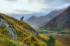 Glen Shiel, going up to Forcan Ridge, Scotland - photo courtesy of Morten Hansen Photography