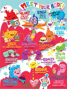 Indulge your curiosity about the human body with this fun-filled poster starring all your gutsy pals!