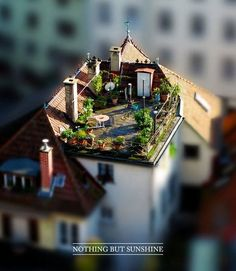 Tilt Shift Photography 04| new experimentation coming soon to a website neat you