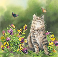Butterfly Dreams – Cat by Susan Bourdet