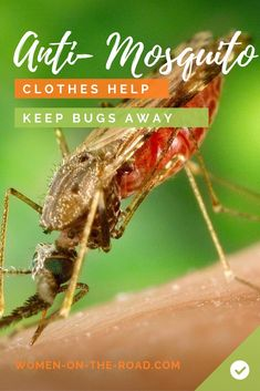 Mosquito Repellent Clothing: Helping Avoid Malaria, Dengue and Zika Mosquito Repellent Clothing, Natural Mosquito Repellant, Keeping Mosquitos Away, Keep Bugs Away, Mosquito Control, Zika Virus, Healthy Nutrition, Traveling By Yourself