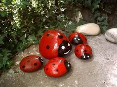 Painted rocks to seasons decorations and personal taste of gardening decorations. Give fun feeling and personality.