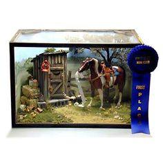 White Horse Studio Miniature Rooms, Western Theme, Wild West, Shadow Box, Vignettes, Pet Birds, Dollhouse Miniatures, Celtic, Westerns