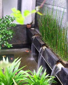 Popular Minimalist Fish Pond Design Ideas You Should Try Koi Pond Design, Landscape Design, Garden Design, Terrace Garden, Water Garden, Ponds Backyard, Backyard Landscaping, Floating Plants, Minimalist Garden
