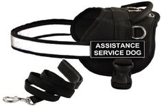 Dean and Tyler Bundle - One 'DT Works' Harness, Assistance Service Dog, X-Small With One Matching 'Padded Puppy' Leash, 6 FT Stainless Snap - Black -- Click on the image for additional details.(It is Amazon affiliate link) #startup
