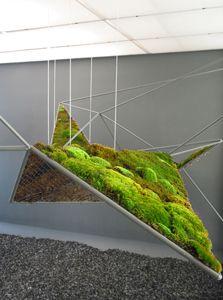 Urban Greenery, Hanging Moss Garden from the moistscape...