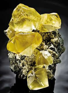 Very fine golden Calcite group from Kazakhstan. The Calcites are twinned and sit on a greyish limestone matrix