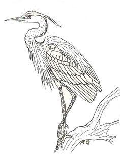 Heron Bird Coloring Pages Great Blue Heron Printout EnchantedLearning needleart