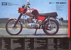 TS 250/1