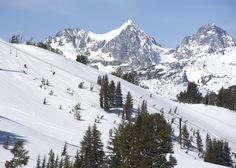 Mammoth Mountain, Mammoth Lakes, CA