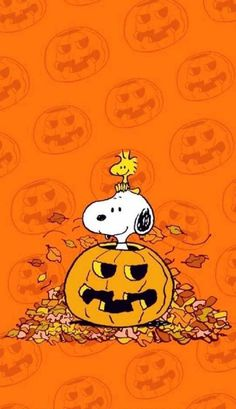 Snoopy Halloween Wallpaper by - - Free on ZEDGE™ now. Browse millions of popular halloween Wallpapers and Ringtones on Zedge and personalize your phone to suit you. Browse our content now and free your phone Snoopy Halloween, Charlie Brown Halloween, Disney Halloween, Charlie Brown Und Snoopy, Cute Halloween, Feliz Halloween, Halloween Movies, Halloween Nails, October Wallpaper