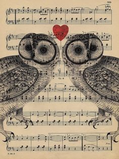 Owls that are totally in love