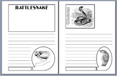 Free printable snakes notebooking pages in three line styles. Also includes the cobra and rattlesnake. Homeschool Coop, Homeschooling, Amphibians, Reptiles, Printable Worksheets, Printables, Lap Books, Unit Studies, Nature Journal