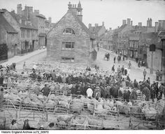 CC72/00970. Sheep Market, Chipping Campden, Gloucestershire. 1895, Henry Taunt. Please click for more information and to search the collections Historical Images, Sheep, Paris Skyline, England, Collections, Search, Travel, Outdoor, Outdoors