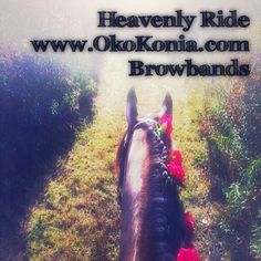 Heavenly Rides on Your Favorite Horse...brought to you by Oko Konia artisan browbands. www.okokonia.com