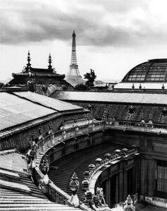 Les toits du Petit-Palais, Paris. 1947.