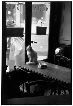 A cat in Paris. Photo: Henri Cartier-Bresson, 1953.