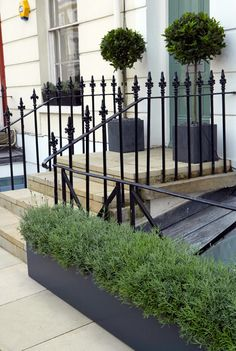 Small Patio Garden Design Front Doors Ideas For 2019 Bay Tree Front Door, Front Door Plants, Front Door Entrance, Entrance Ideas, Doorway, Bay Trees In Pots, Victorian Front Doors, Victorian House, Small Front Gardens