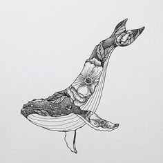 Whale Drawing IdeaYou can find Art drawings and more on our website. Art And Illustration, Illustration Inspiration, Ink Drawings, Cool Drawings, Detailed Drawings, Drawing Sketches, Whale Tattoos, Whale Art, Desenho Tattoo