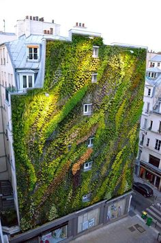 This living wall provides a sense of movement and flow on the wall.[Original:Revealing A Stunning Living Wall: Patrick Blanc's Work for Paris Design Week] Green Architecture, Landscape Architecture, Landscape Design, Sustainable Architecture, Garden Ideas To Make, Vertical Garden Design, Vertical Gardens, Small Gardens, Green Facade